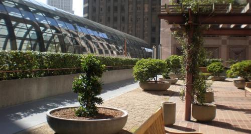 iroda tető kertek